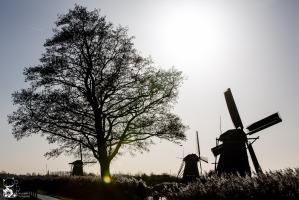 Kinderdijk_4.jpg